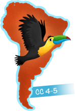 Toucan in South America